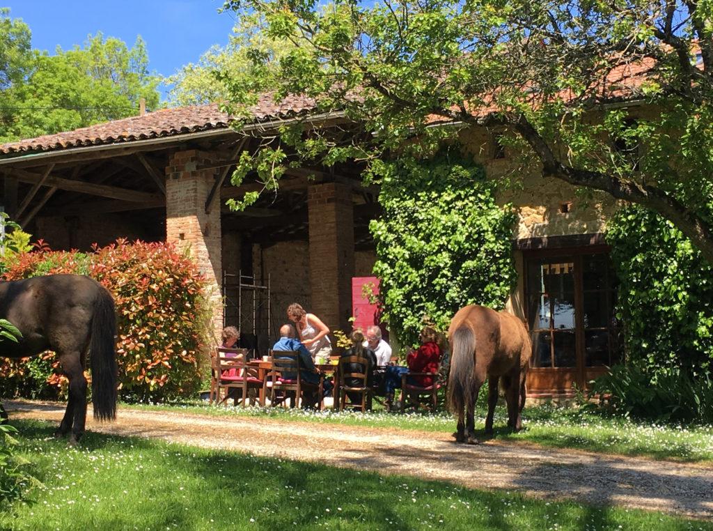 Paardencoach vakantie Frankrijk