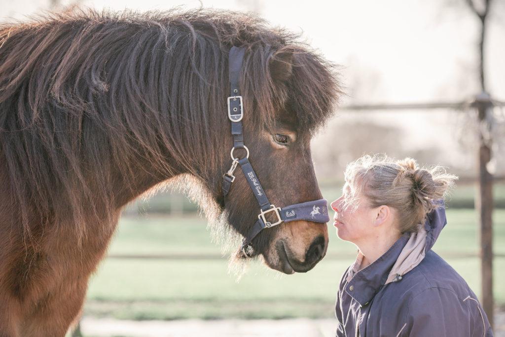 Paardencoaching Overijssel