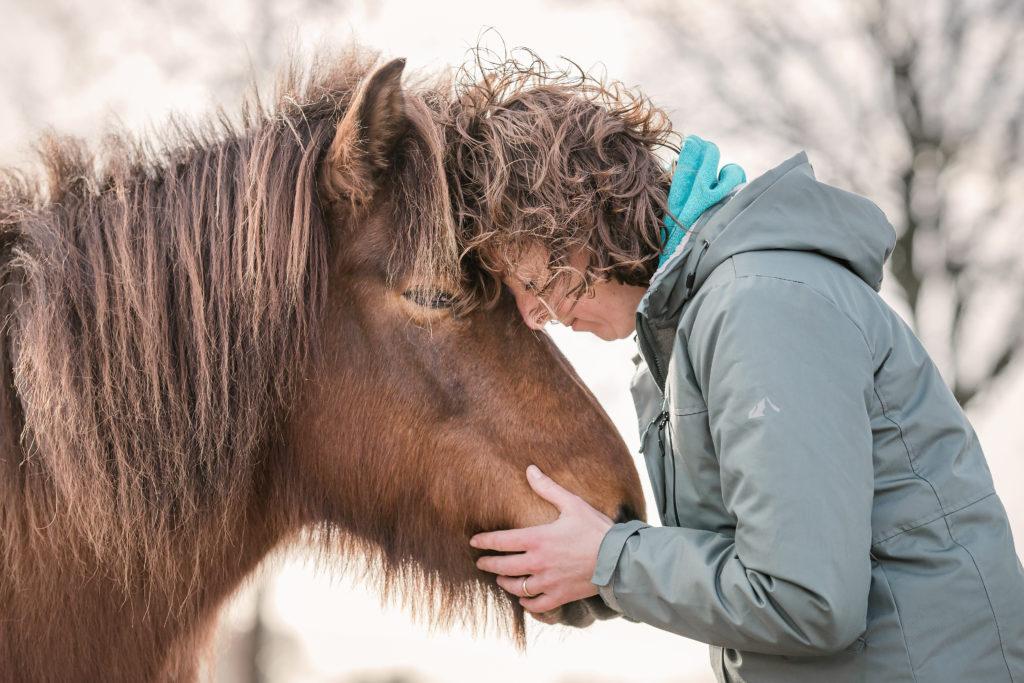 contact opnemen Puur met Paarden