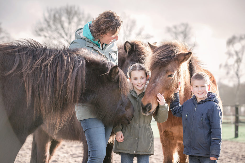 paardencoach Meppel