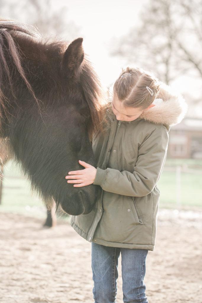 paardencoach Overijssel