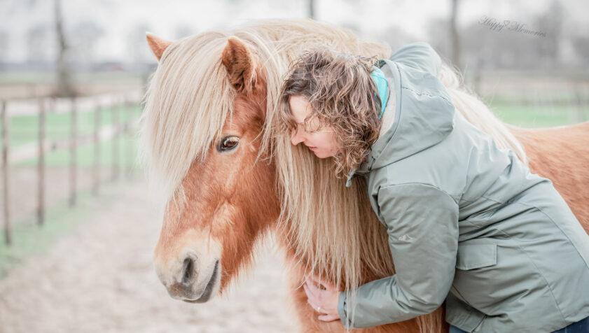 PTSS paardencoaching